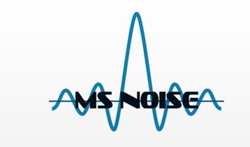 MS Noise